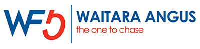 Waitara Angus